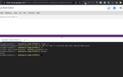 Google Cloud Console Example Commands